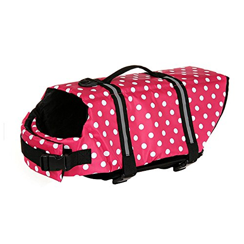 Skyoo - Chaleco salvavidas para perro, con flotación y hebillas ajustables para la mayoría de los perros: Amazon.es: Productos para mascotas