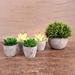 Artificial-Succulent-Plants-Potted-Fake-Succulents-Set-of-5-Home-Office-Rustic-Bathroom-Decor-Gift-Faux-Potted-Plants-Assorted-Artifical-Decorative-centerpieces-Plants-in-Pots-for-Table
