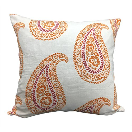 Indian Paisley Block Print Pillow | TYLER 20x20