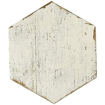 "SomerTile FNURTXBL Vintage Hex Porcelain Floor and Wall Tile, 14.125"" x 16.25"", White/Brown"