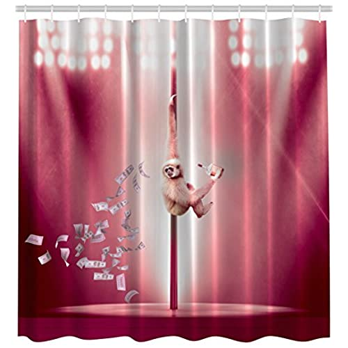 Fun Shower Curtain: Amazon.com