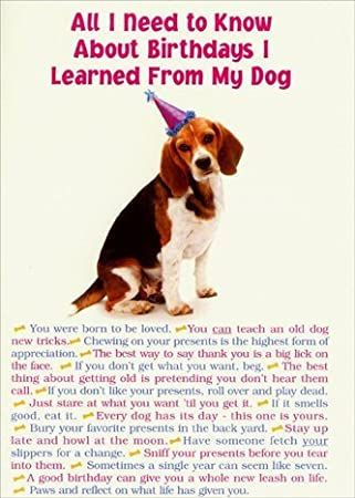 Amazon all i need from dog portal funny birthday card all i need from dog portal funny birthday card bookmarktalkfo Images