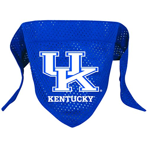 Hunter Mfg. LLP NCAA Kentucky Wildcats Pet Bandana, Team Color, Small