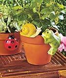 Set of 3 Animal Pot Hangers - Snail, Ladybug, Frog