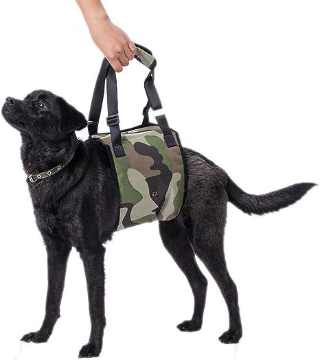 Arnés de Apoyo para Perro con Soporte para Ayudar a los Perros ...