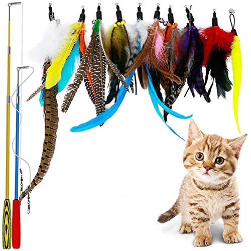 (B Bascolor Retractable Cat Toys Interactive Feather Teaser Wand Toy with 2 Poles 10 Attachments Worm Birds Feathers for Kitten Cats)