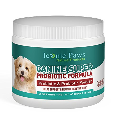 Bacteria Powder (Prebiotic and Probiotic Powder for Dogs by Iconic Paws- Balance Gut Bacteria, Support Digestion and Ease Gas, Bloating and Diarrhea - Promotes Health, Fights Anxiety - Pet-Safe, Premium Quality)