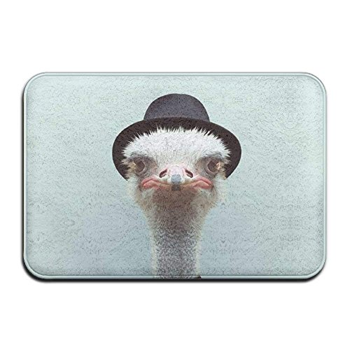 Animals Dressed Like Humans Ostrich Anti Slip Room Home Doormat Stain Resistant Floor Mat For Kitchen Bathroom 15.7 X 23.6 Inch ()