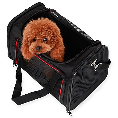 A4Pet-Collapsible-Airline-approved-Soft-Pet-Carrier-for-Dogs-and-Cats-up-to-18-lbs