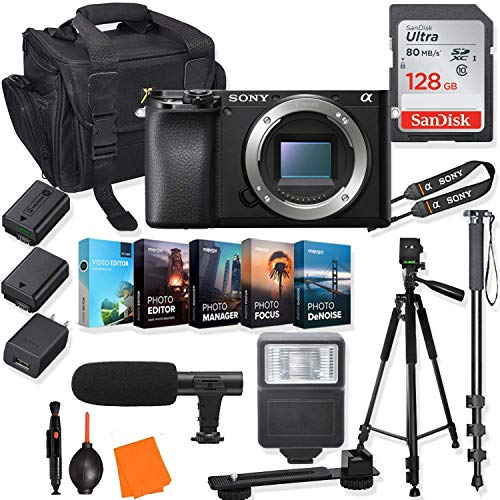 Sony Alpha a6100 Mirrorless Digital Camera (Body Only) Kit + Prime Accessory Bundle with 128GB Memory & Photo/Video Editing Software