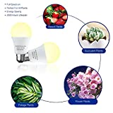 4 Pack LED Grow Light Bulb A19 Bulb, Full Spectrum