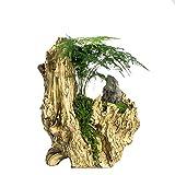 NCYP Artificial Driftwood Planter Resin Flower Pot Large Sculpture Succulent Air Plants Multilayer Irregular Hallow Out 2 Pots Rustic 2 Layers Trunk Stump for Decoration No Plants