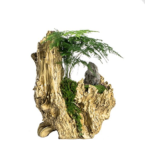 NCYP Artificial Driftwood Planter Resin Flower Pot Large Sculpture Succulent Air Plants Multilayer Irregular Hallow Out 2 Pots Rustic 2 Layers Trunk Stump for Decoration No Plants (Artificial Christmas Bonsai Tree)