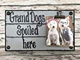 PHOTO HOLDER Dogs Spoiled Here SINGLE Picture Wall Frame Memo Board GRAY Grey Reclaimed Sign with Clip Wood Grandma Grandpa Dog baby Home Decor Review