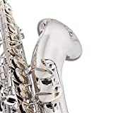 Jean Paul USA Silver-Plated Intermediate Tenor