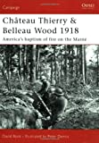 Château Thierry & Belleau Wood 1918: America's baptism of fire on the Marne (Campaign)