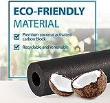 Filterlogic UKF8001 Water Filter, Replacement for