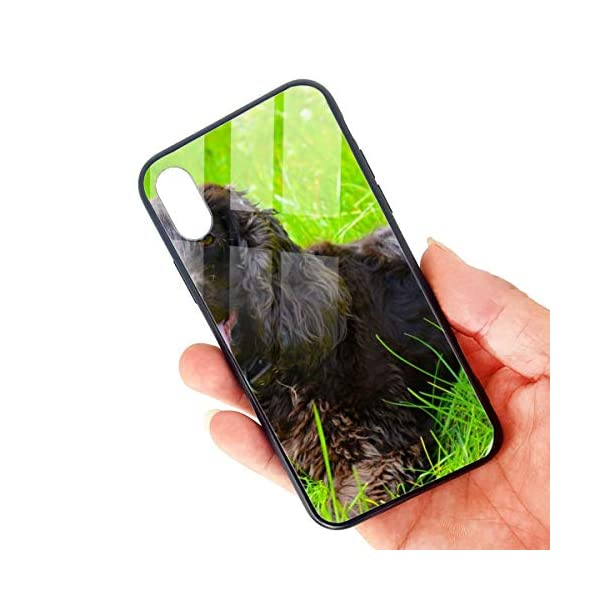 Irish Water Spaniel iPhone X/XS Case, TPU Bumper Protective-Compatible 3