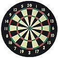 Accudart D4001 Starlite Dartboard