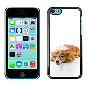 Impact Case Cover with Art Pattern Designs FOR iPhone 5Cs Funny Glasses Dog Cute Betty shop