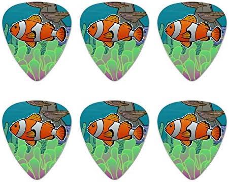 Pez payaso en Arrecife de océano Coral Anemone – púas de guitarra ...