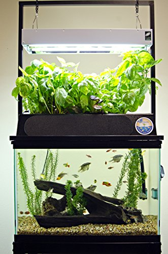 51W3SsqKjkL - ECO-Cycle Aquaponics Indoor Garden System with LED Light Upgrade