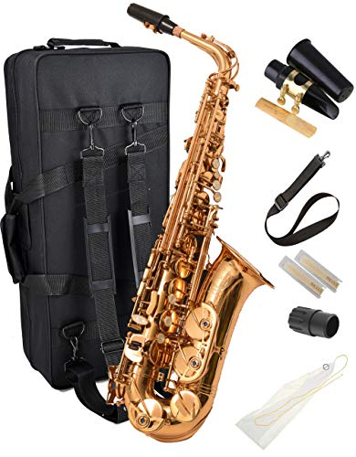 Herche Superior Alto Saxophone AS-630 - Best for Students - High F# Key - Plush lined Back Pack Case, Leather Pads, Cork Grease, Neck Strap and #2 Rico Alto Sax Reeds Included