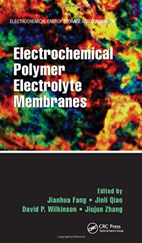 Electrochemical Polymer Electrolyte Membranes (Electrochemical Energy Storage and Conversion) (The Conversion Of Solar Energy To Chemical Energy)