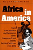 Africa in America: Slave Acculturation and Resistance in the American South and the British Caribbean, 1736-1831 (Blacks in the New World)