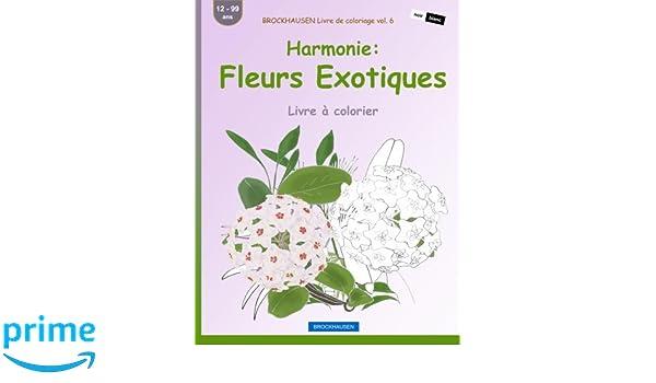 Brockhausen Livre De Coloriage Vol 6 Harmonie Fleurs