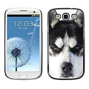 SHIMIN CAO- Dise?o Caso duro de la cubierta Shell protector FOR Samsung Galaxy S3 I9300 I9308 I737- Huskies Husky Dog Paws Cute