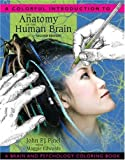 A Colorful Introduction to the Anatomy of the Human Brain: A Brain and Psychology Coloring Book by Pinel, John P.J., Edwards, Maggie [Pearson, 2007] (Paperback) 2nd Edition [ Paperback ]