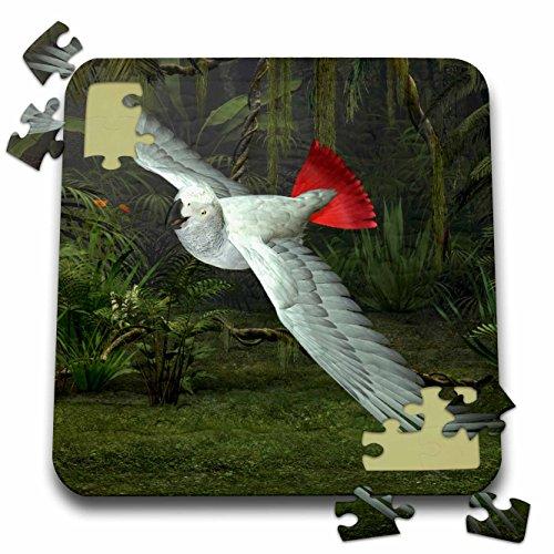 Birds Game Boehm (Boehm Graphics Bird - Congo African Grey Parrot - 10x10 Inch Puzzle (pzl_60732_2))