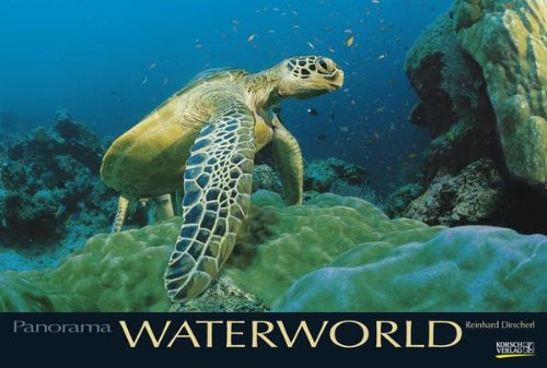 waterworld-2013-photoart-panorama
