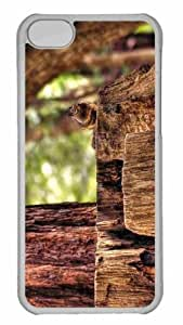 Customized iphone 5C PC Transparent Case - Squirrel Personalized Cover by mcsharks