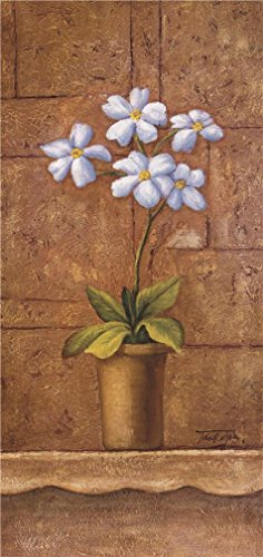 Oil Painting 'Pot Plant Of White Flowers', 20 x 42 inch / 51 x 108 cm , on High Definition HD canvas prints is for Gifts And Hallway, Nursery And Powder Room Decoration, affordable