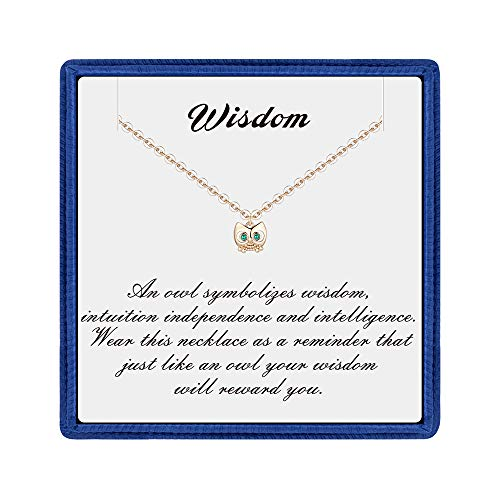 PAERAPAK Wisdom Owl Necklace for Teen Girl Gifts - Tiny 14K Gold Filled CZ Owl Pendant Necklace Inspirational Gifts for Women Teacher Appreciation Gifts Baby Girl Gifts (Baby Owl Jewelry)