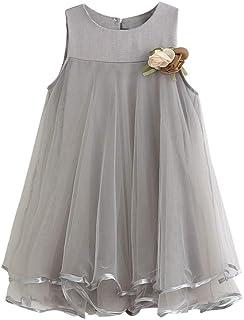 Weant Baby Kleidung Mädchen Outfits Röcke Mesh mit Boutonniere Prinzessin Partykleid Sommerkleid Prinzessin Kleid Kinder Kleider Baby Bekleidungssets Neugeborenen Bekleidungset 0-6 Monate