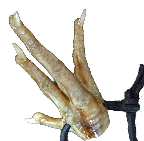 Chicken Foot Necklace New Orleans Louisianna Cajun Voodoo Magic Amulet (Costumes Chicken Feet)