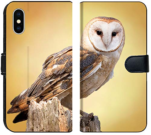 Apple iPhone XS MAX Flip Fabric Wallet Case Image ID 27944160 A barn owl Perched on a Dead Tree Stump Barn Owls are Silent Predator