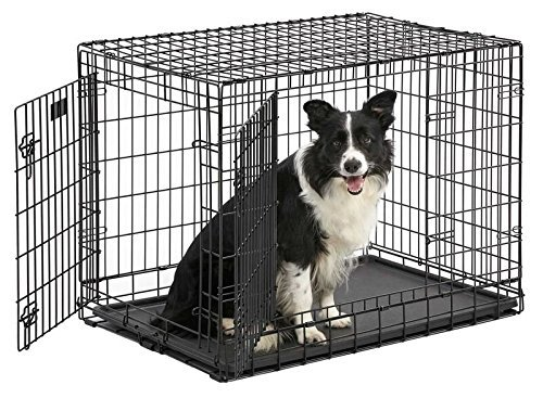 36″ W/Divider, Double Easy-On/Off Removable Doors Dog Crate