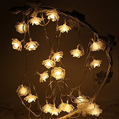 Flower String Light, TLY LED Indoor and Outdoor Flower Fairy Lights Batteries Operated Decor for Chrismas, Party, Wedding, Patio, Garden