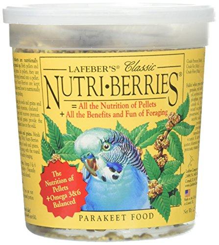 Parakeet Berry (Classic Nutri-Berries)