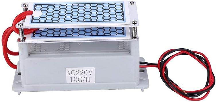 Generador de ozono 10g Purificador de aire para el hogar Ozonizador Limpiador de aire Esterilización Olor(220V): Amazon.es: Bricolaje y herramientas