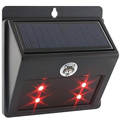 Albrillo Courtyard Solar Powered Predator Deterrent LED Light Outdoor Sensor Lamp