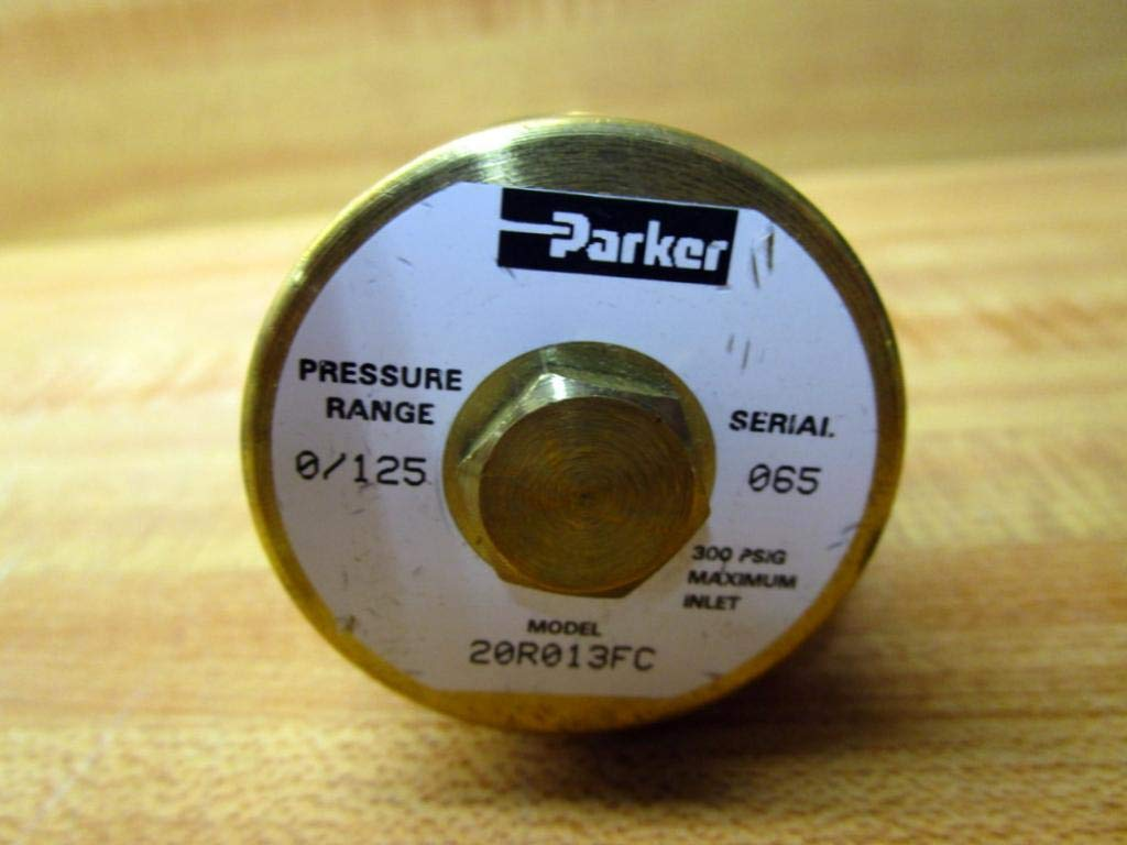 Parker Hannifin 20R113FC1 Series 20R Brass Miniature Water Service Pressure Regulator 125 psig Pressure Range 1//4 BSPP Port Size Relieving Relief