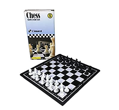 """C-Squared Magnetic Chess Set 