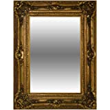 Timeless Reflections by AFD Home 10908178 Timeless Reflections Renaissance Mirror, Antique Gold Finish