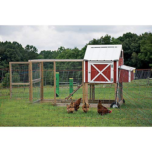 Fencing Poultry Electric (Powerfields Posi/Negi Commercial Poultry Pen)