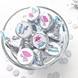 "108 - .75"" Gender Reveal Stickers, Team Boy and Team Girl Stickers for Candy and Hershey Kisses (#119-KS)"